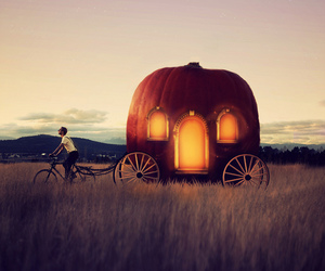 pumpkin, cinderella, and Dream image