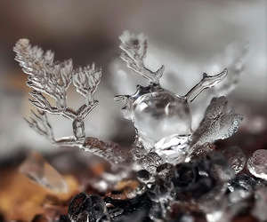 snowflake and sculpture image