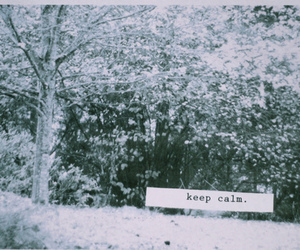 text, keep calm, and photography image