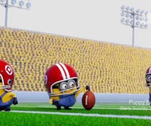 minions, football, and funny image