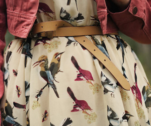 belt, birds, and dress image