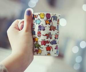 cup, elephant, and photography image