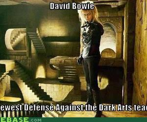 david bowie, harry potter, and dark arts image