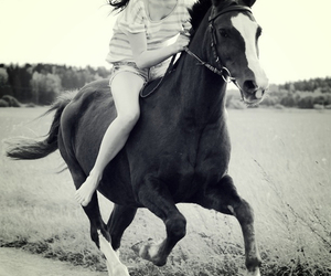 horse, girl, and freedom image