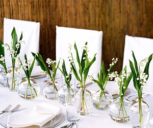 table and table setting image