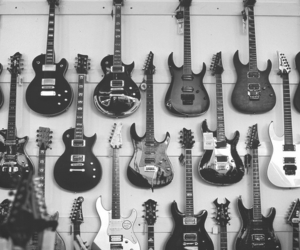 and, b&w, and les paul image