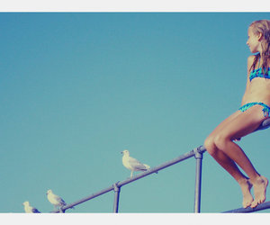 bathing suit, girl, and seagulls image