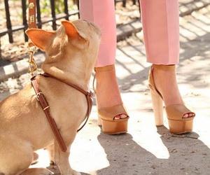 art, heels, and cute image
