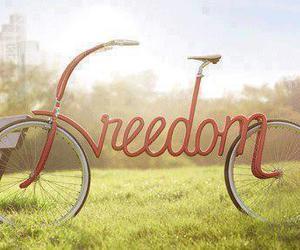 freedom, bike, and bicycle image