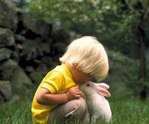 cute, rabbit, and boy image