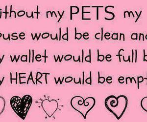 love, pets, and heart image