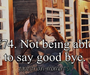 goodbye, horse, and equestrian moments image