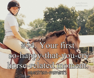 horse and equestrian moments image