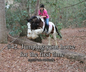 horse, equestrian moments, and jump image
