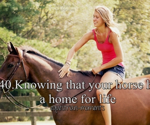 home, horse, and equestrian moments image