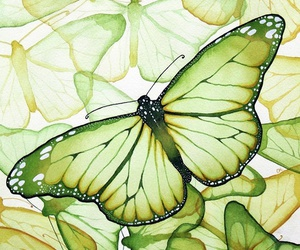 butterfly, green, and art image