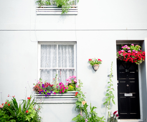 flowers, white, and house image