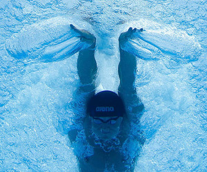 butterfly, swimmer, and swimming image