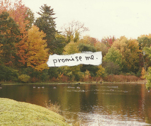promise and words image