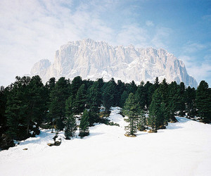 snow, tree, and mountains image