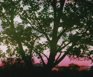 colors, sunset, and nature image