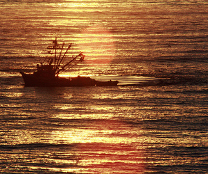 boat, fishing, and pacific ocean image