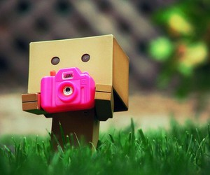 photography, cute, and camera image