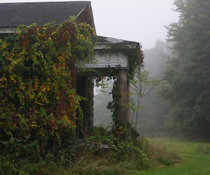 house, abandoned, and fog image