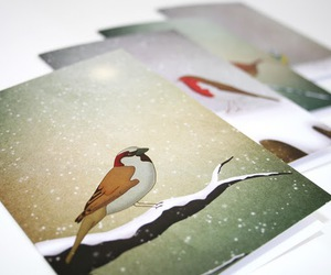 bird, Chicken, and origami image