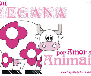 cow, pink, and vegetarian image