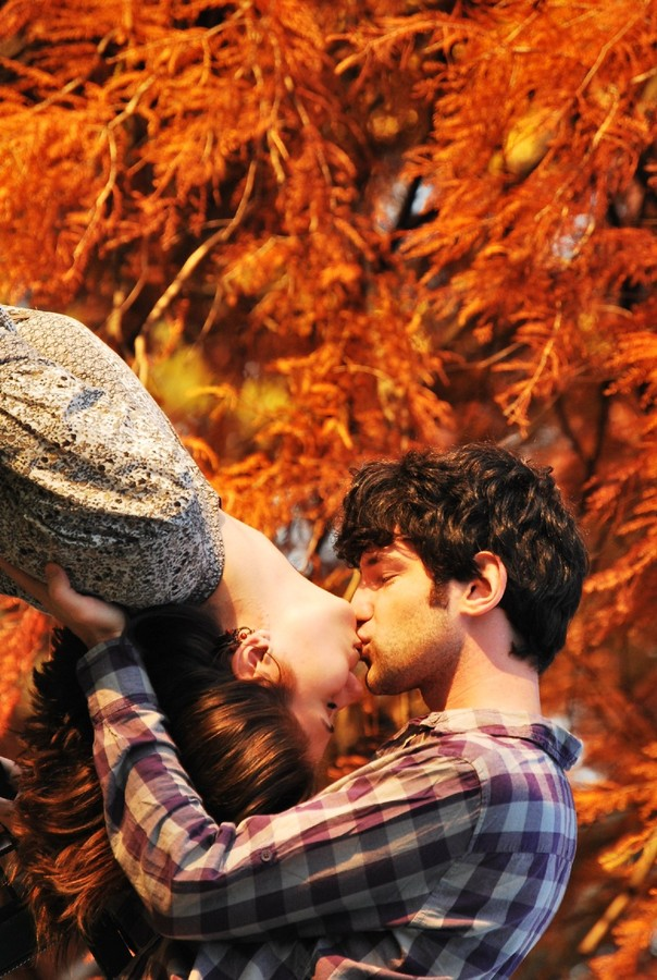 autumn, couple, and lover image