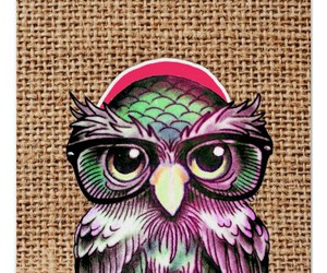 cap, glasses, and owl image