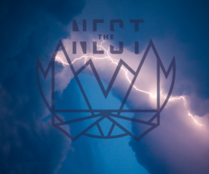 nest and owsla image