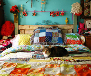 cat, room, and bed image