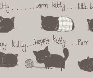 kitty, cat, and the big bang theory image