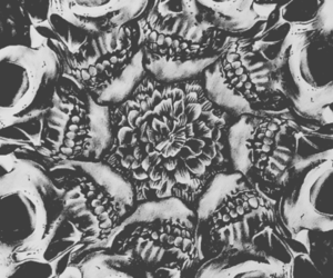 skulls and symmetry image