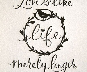 authors, love, and life image