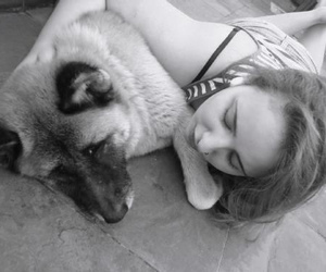 akita, best friends, and black & white image
