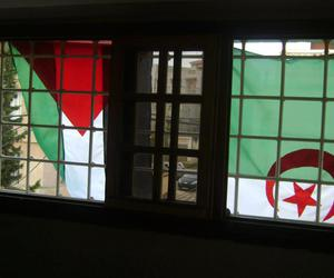 Algeria, country, and flag image