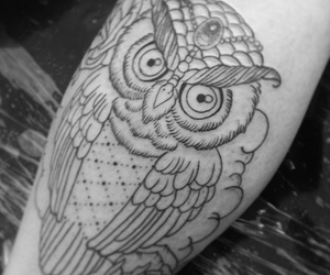 b&w, black and white, and owl image