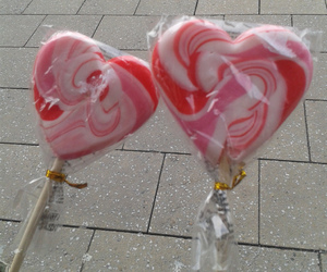 candy, lollipop, and rose image