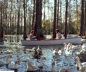 the notebook, noah, and ryan gosling image