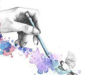 drawing, bird, and illustration image