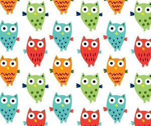 owl, colors, and illustration image