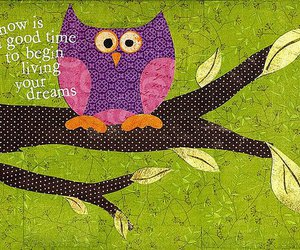 owl and Dream image