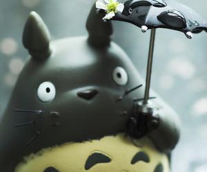 totoro, anime, and rain image