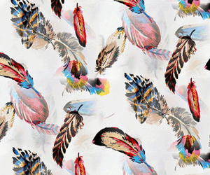 wallpaper and feather image