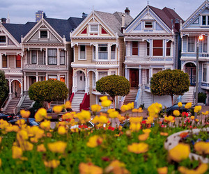 house, flowers, and san francisco image