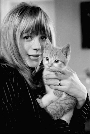cat, marianne faithfull, and black and white image