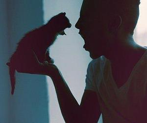 cat and man image